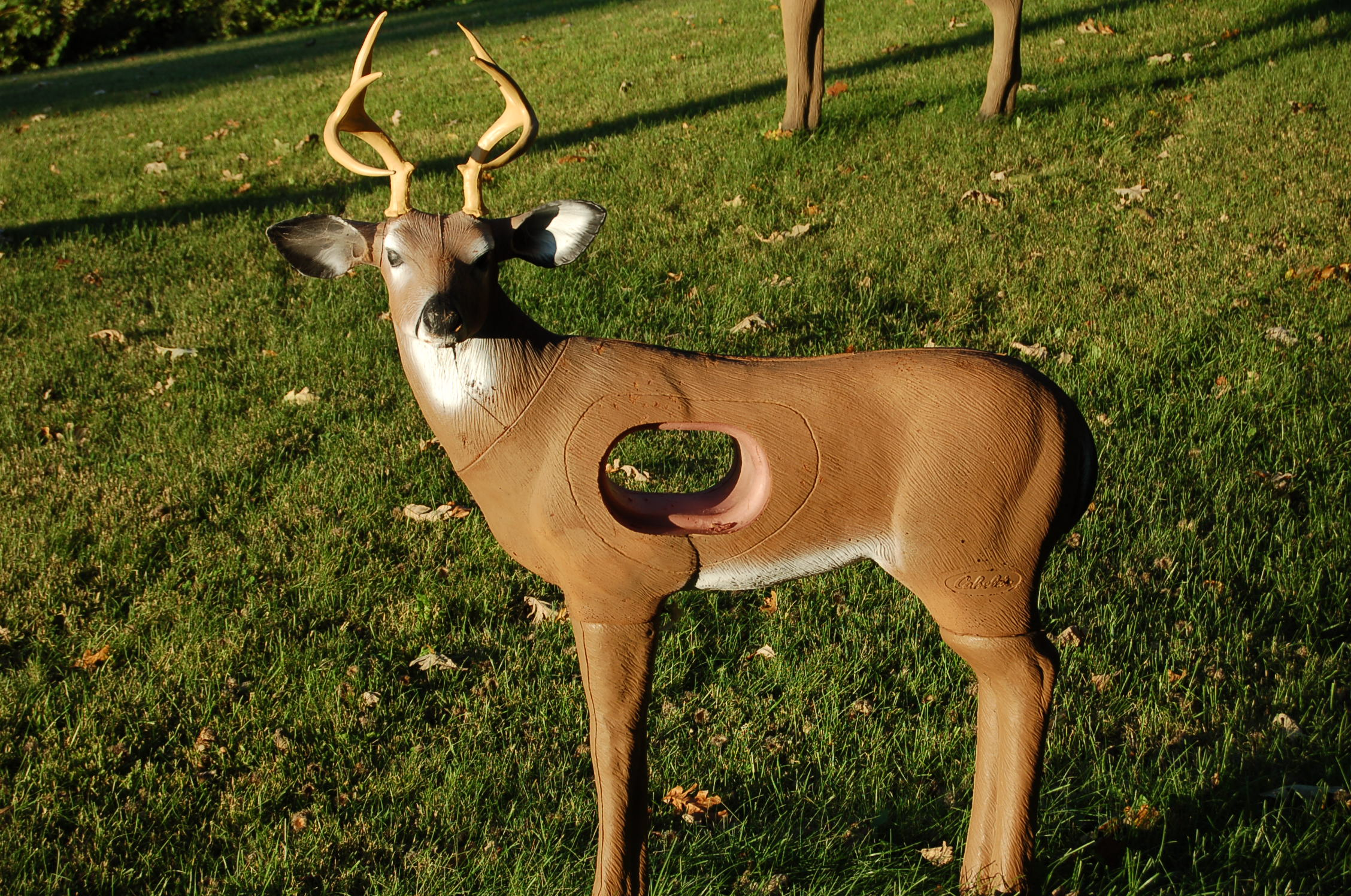kill buck singles Home the gun raffle singles or collections email for quote: curtis@vermontbiggametrophyclubcom leon grant buck - 183 state record typical.