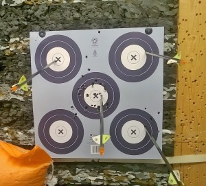 ArcheryTargetPractice